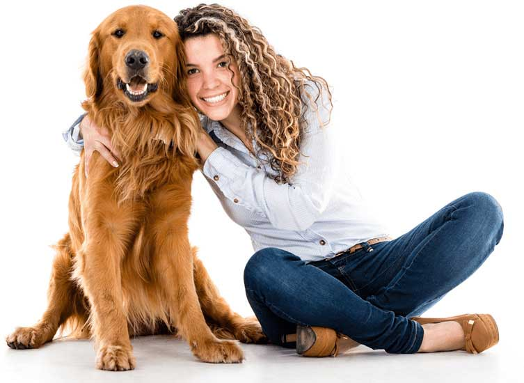 Enroll in a School for Dog Trainers